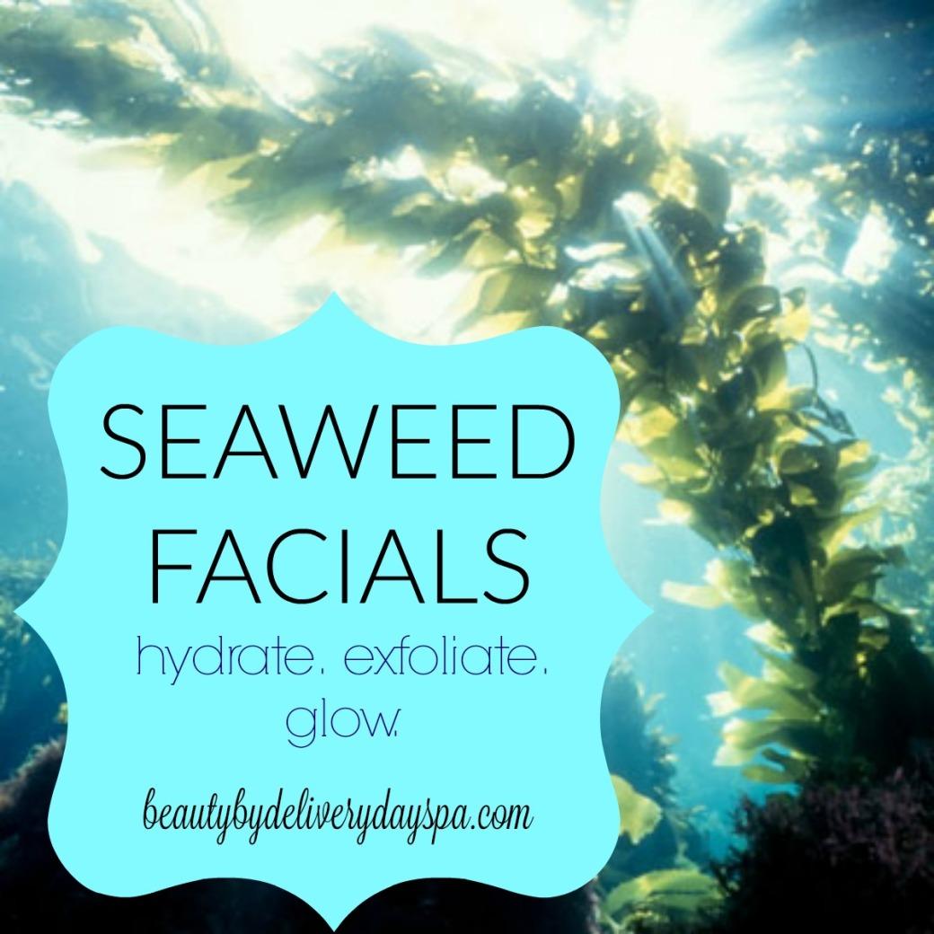 seaweed-facial
